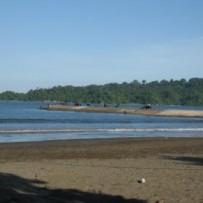 Pertamina Melakukan Aksi Bersih di Pantai Teluk Penyu
